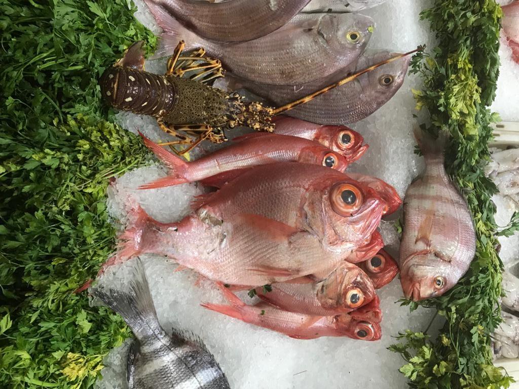 Cuida de nuestros océanos al tomar decisiones responsables al comer