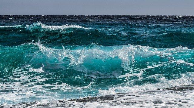 La importancia del océano - 50% del oxigeno que respiramos